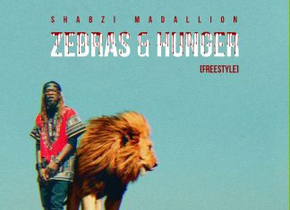 Music: ShabZiMadallion - Zebras & Hunger (Freestyle)