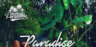 Palm Tree Paradise - Unbelievable (Remix) ft Gigi Lamayne, Aewon Wolf & Lastee