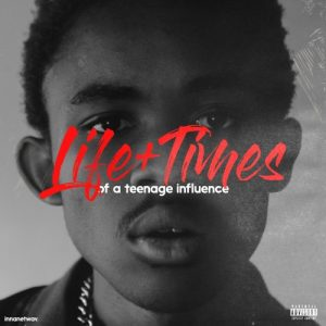 DOWNLOAD The Big Hash Life + Times Of A Teenage Influence EP