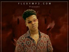 FlexyMp3 Best Of Nasty C (Mixtape)