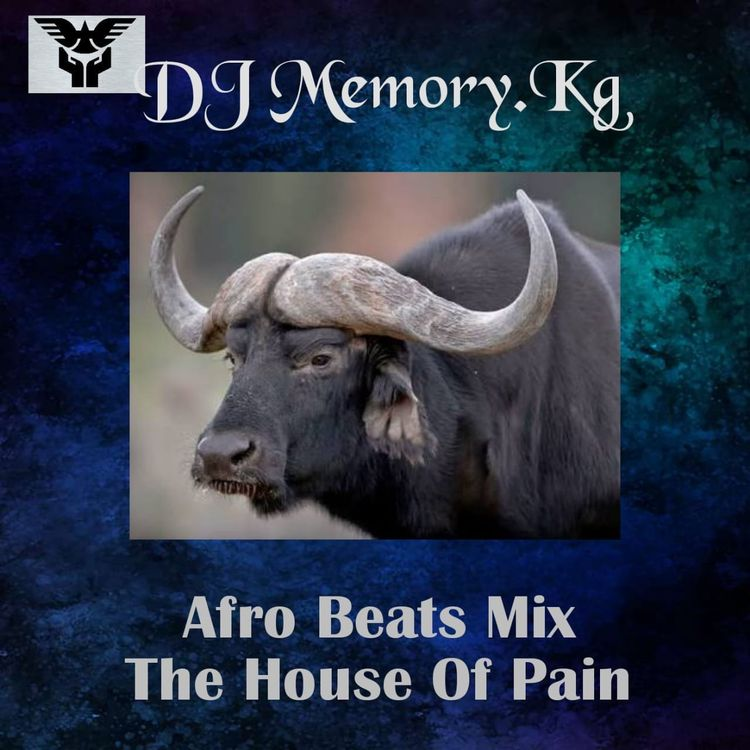 DJ Memory.Kg - Afro Beats Mix (The House Of Pain)