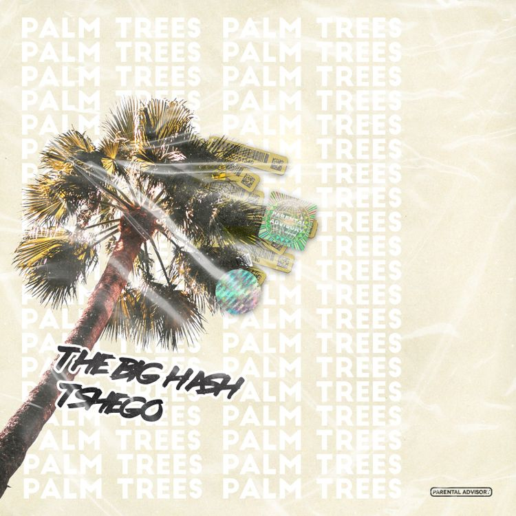 The Big Hash - Palm Trees ft. Tshego