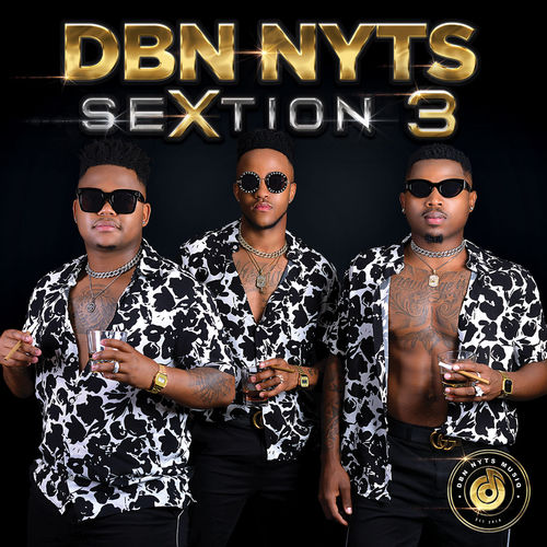 DOWNLOAD Dbn Nyts SeXtion 3 Album