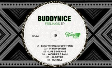 DOWNLOAD Buddynice Feelings EP