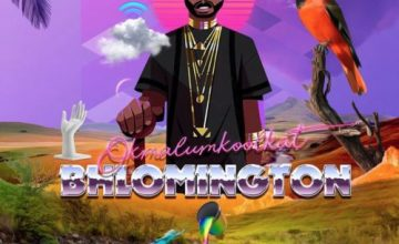 Okmalumkoolkat – The Mpahlas